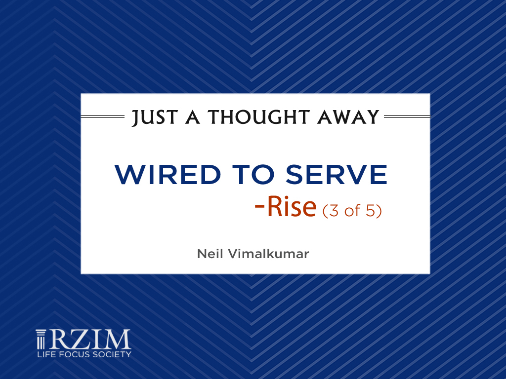 Wired to Serve - Rise